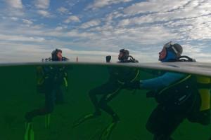 Entrainements d'hiver dans l'étang de Thau © Fondation Octopus