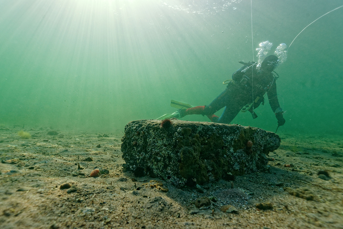 The entire site was almost entirely covered by sediment © Octopus Foundation