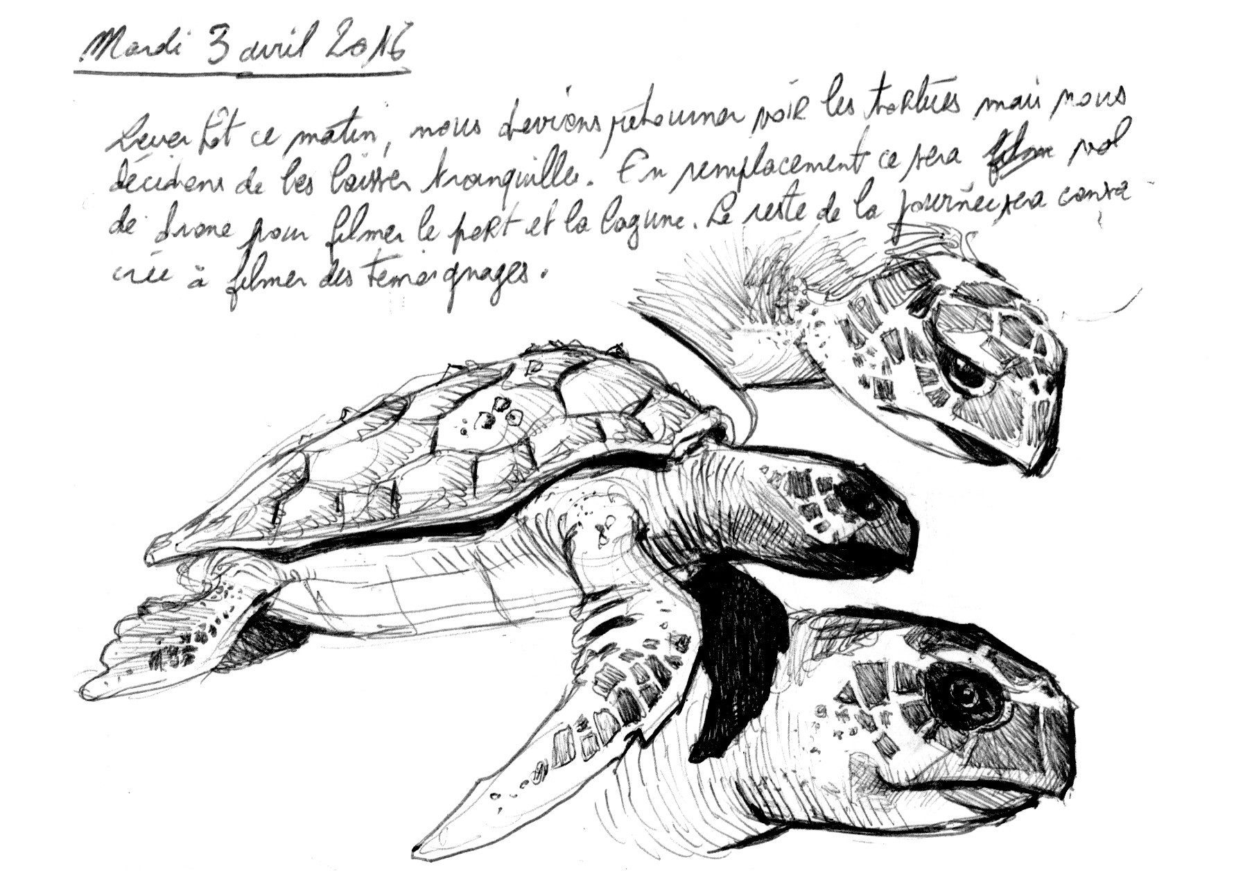 étude biologie marine