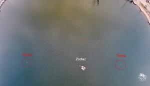 Guider par la position du drone, l'équipe du Zodiac s'approche de la tortue
