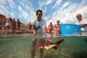 Remise à l'eau d'une tortue soignée au centre de Lampedusa © Philippe Henry / Octopus Foundation