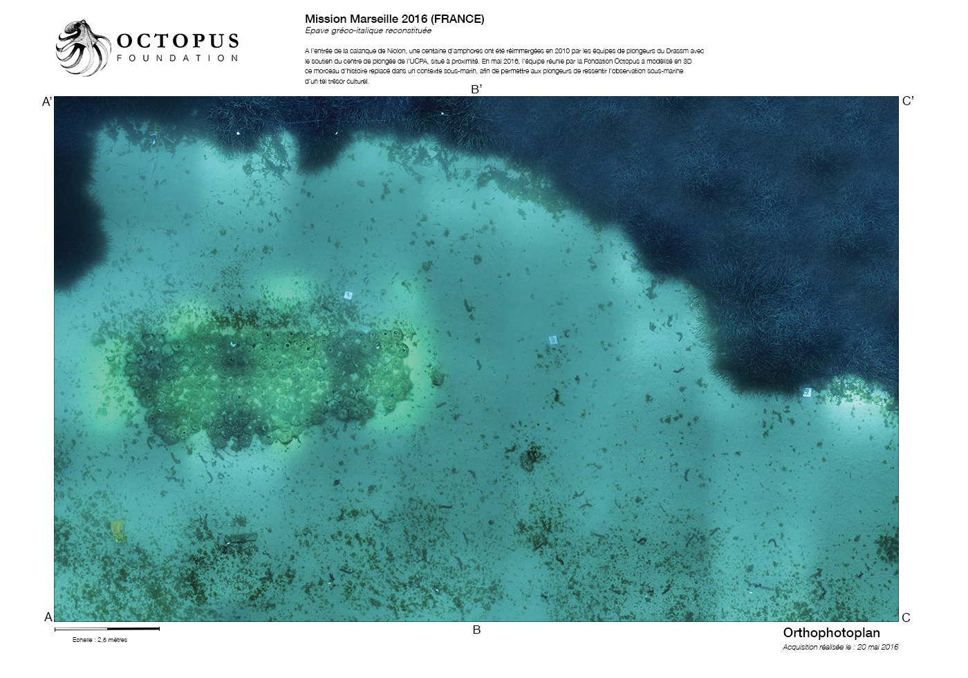Orthophotoplan is a vertical projection of the 3D model ; a scientific tool that can provide the Octopus Foundation to underwater archeologists and biologists alike © Octopus Foundation