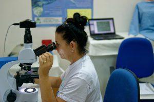Daniela Freggi utilise le nouveau microscope pour étudier du sang de tortue marine © Philippe Henry / Octopus Foundation