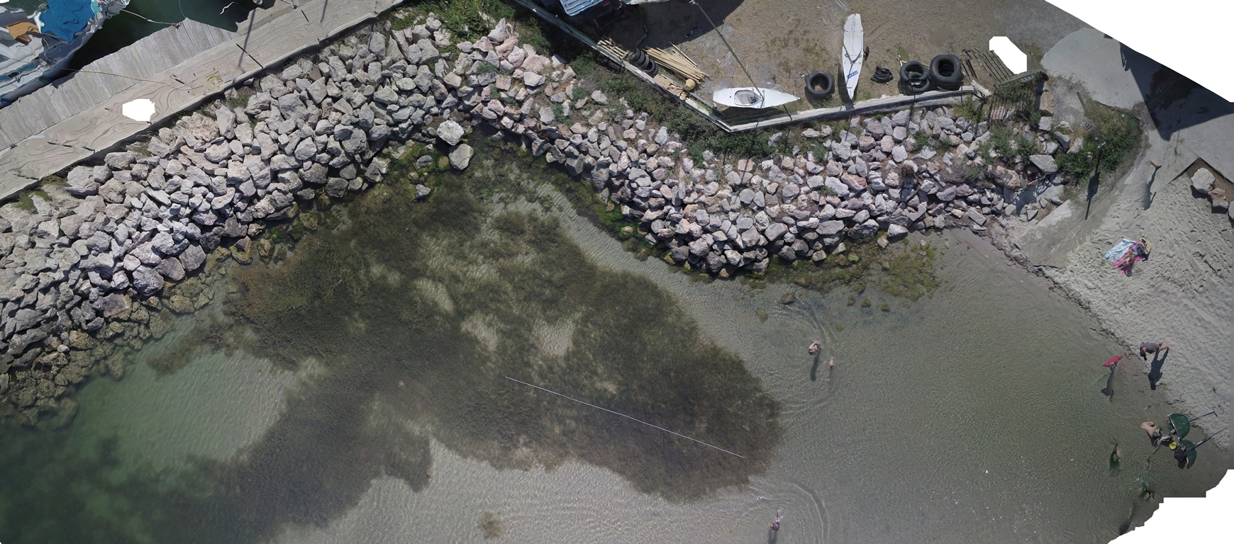 The orthophotoplan created with the photos of the drone is used to measure with great precision this particular seagrass in the Étang de Thau © Octopus Foundation