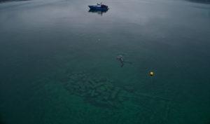Mission de repérage en hiver 2018. L'eau particulièrement claire du lac de Neuchâtel laisse transparaître une épave du 18ème siècle © Octopus Foundation