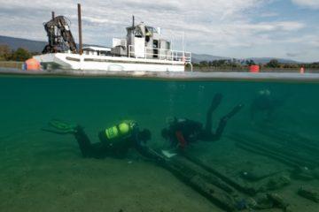 Plongée sur l'épave du 16ème siècle © Octopus Foundation