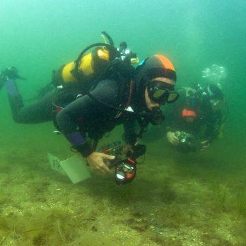 Deux plongeuses de l'association Peau-Bleue lors d'un recensement de Syngnathidés dans la lagune de Thau.